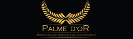 Logotype RESIDENCE PALME D'OR