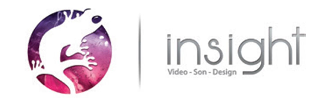 Logotype INSIGHT
