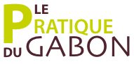 Logotype Le Pratique du Gabon