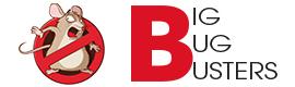Logotype Big bug Busters