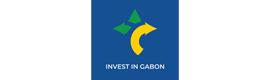 Logotype ANPI-GABON (AGENCE NATIONALE DE PROMOTION DES INVESTISSEMENTS AU GABON)