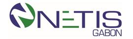 Logotype NETIS GABON