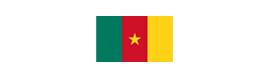 Logotype AMBASSADE DE LA RÉPUBLIQUE DU CAMEROUN