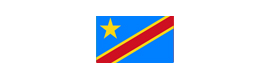 Logotype AMBASSADE DE LA RÉPUBLIQUE DÉMOCRATIQUE DU CONGO
