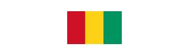 Logotype AMBASSADE DE GUINÉE CONAKRY