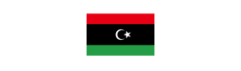 Logotype AMBASSADE DE LIBYE
