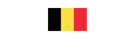 Logotype CONSULAT HONORAIRE DE BELGIQUE