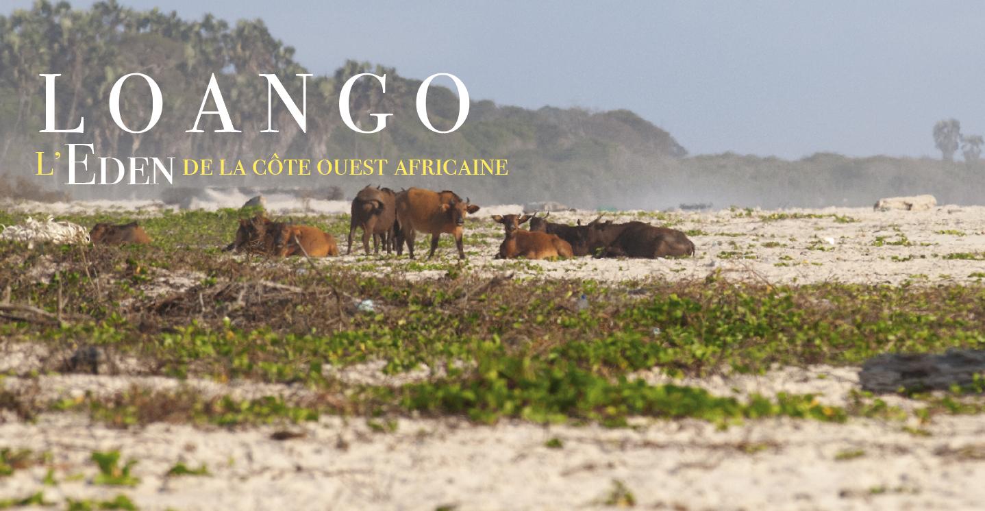 Loango Site